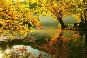 Beautiful-Autumn-background hd