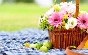 Wallpapers Download-flowers-basket-wallpapers