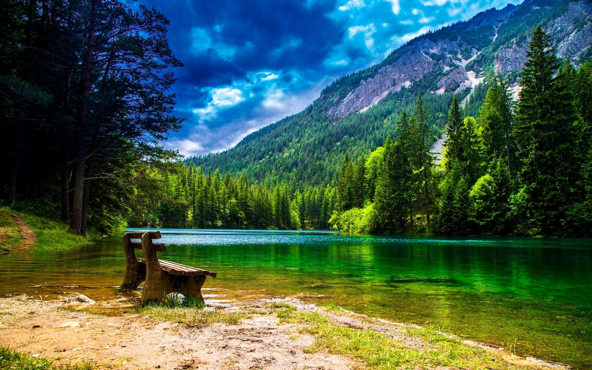 Wonderful Mountain landscape with green pine forest green 3d nature wallpaper