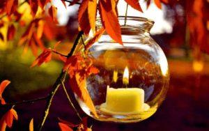 autumn-light-natural wallpaper