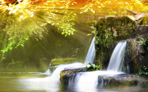 hd-new-wallpapers-nature pictures