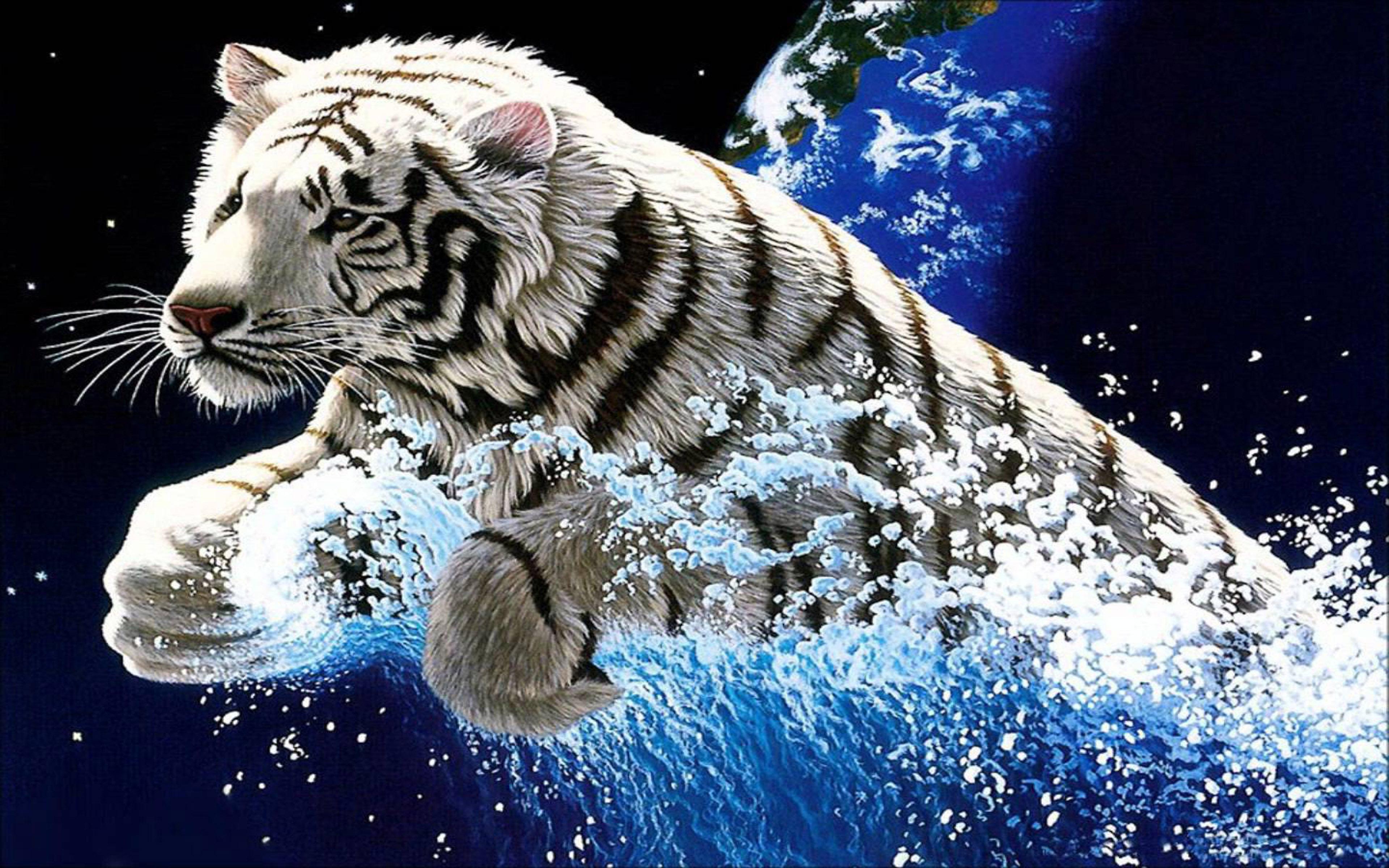 Fantasy Tiger Hd Desktop Wallpapers Widescreen High: High Definition Water Wallpapers