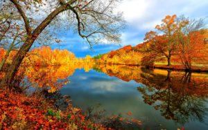 lake-falling-amazing-peaceful-view-autumn-reflection-wallpaper of nature