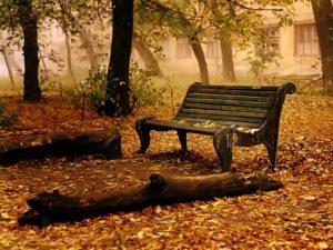 nature background hd-nature