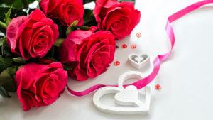 roses desktop wallpapers