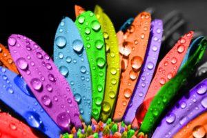 Hayatın-renkleri-cool wallpaper
