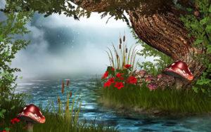 Rivers_Mushrooms_nature_3d natural images