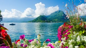 beautiful background images nature