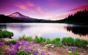 best-scenery-wallpaper-scenery images