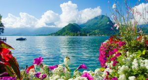 flowers-sea-color-mountains-scenery hd