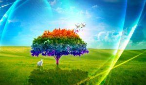 nature-best wallpaper download