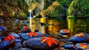 rivers-autumn-leaves-fall-river-stones-waterfall-picture of nature
