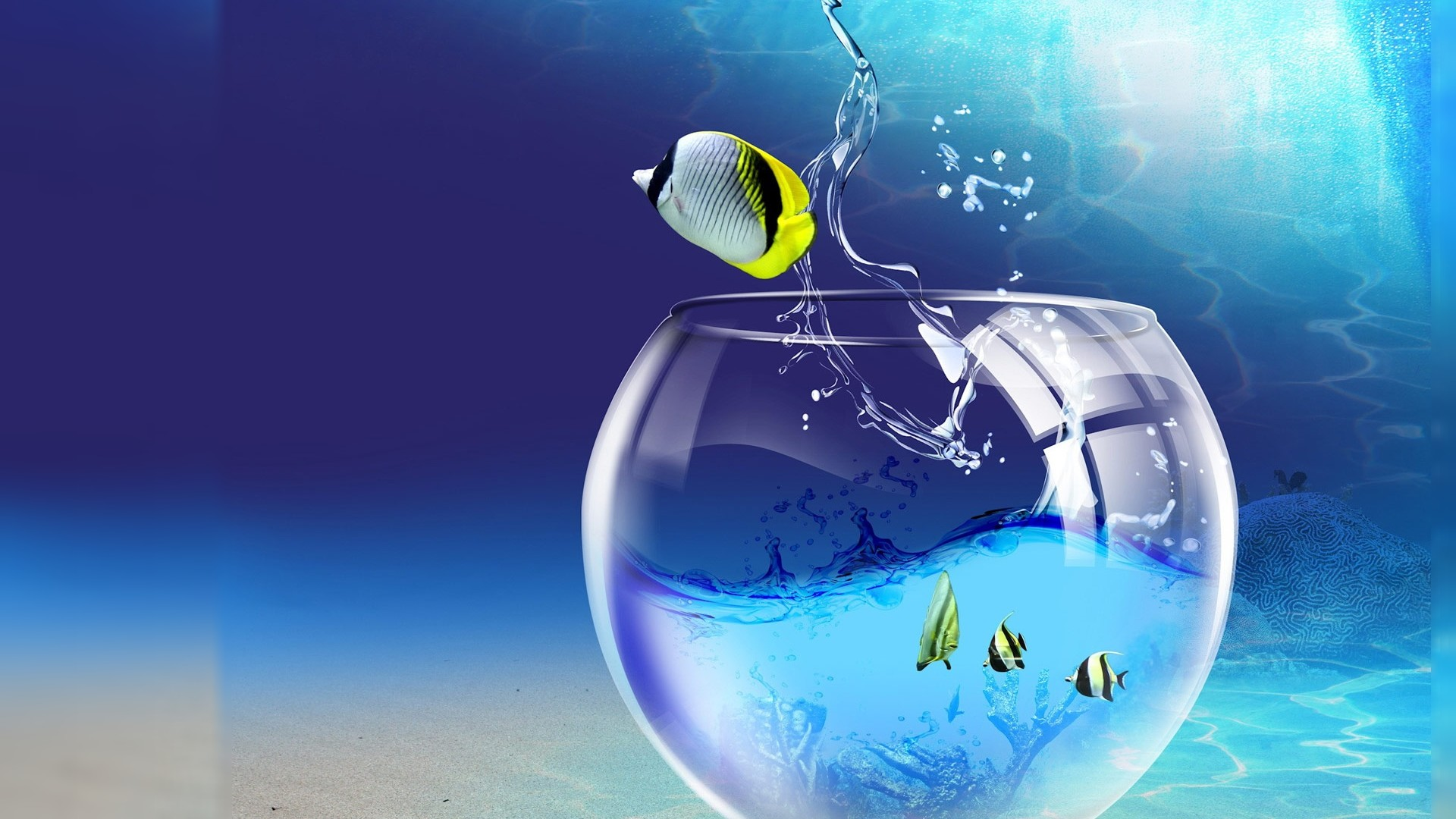 the fish in running 3d wallpaper pc hd wallpapers
