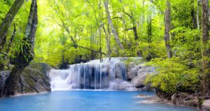 waterfall-background nature