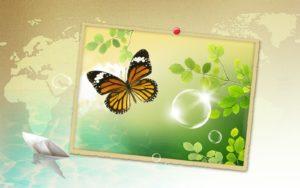 Best HD Desktop Wallpapers-8