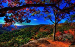 scenery wallpaper full hd-4