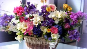 flowers hd-9