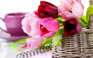 hd flower wallpaper-14